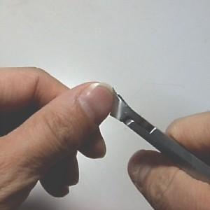 SUWADAの爪切りで実際に切ってみた