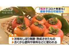 コロナ 渋柿